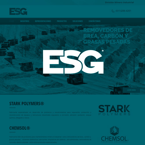 Environment Solutions Group SAC