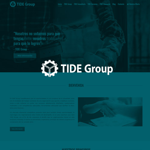 TIDE Group
