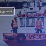 Qué es APN en Perú 2019