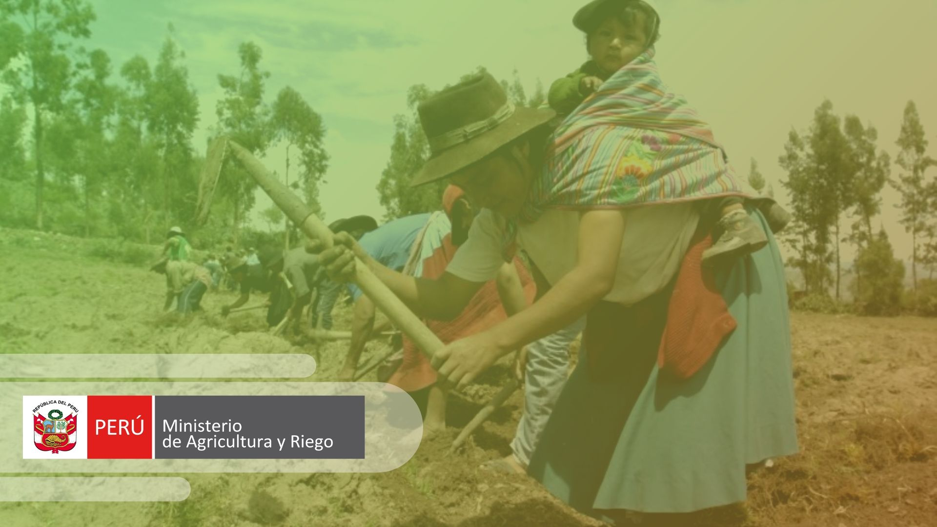 Qué es el MINAGRI Perú