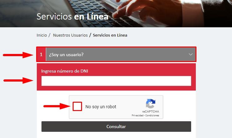 Servicios en línea paso 2