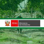 Qué es el MINAM en el Perú