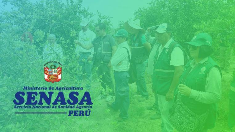 Qué es el SENASA en Perú