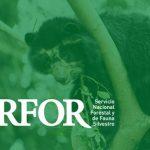 Qué es el SERFOR en Perú